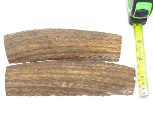 USA 6.25 x 1.5 ELK STAG ANTLER KNIFE MAKING HANDLE SCALE PISTOL GRIP BLANK SLAB