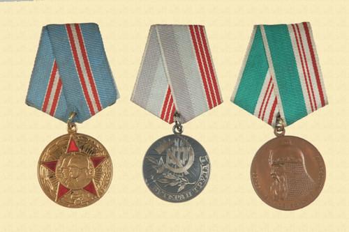 RUSSIAN MEDAL/PIN LOT - C11483