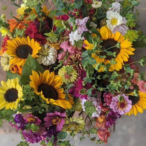 5 Week Cut Flower Subscription