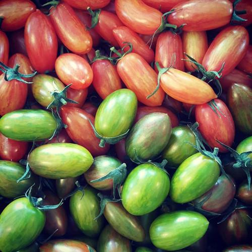Tomato Seedlings: Saladette