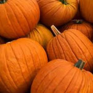 pumpkin spice MakeYourOwn