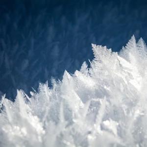 Frozen Realm Fragrance Oil