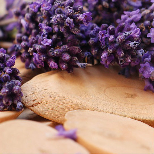 lavender fragrance oil MakeYourOwn