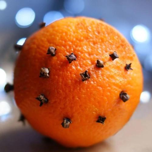 Citrus Clove Fragrance Oil