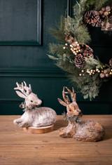 Birch Laying Reindeer
