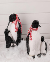 Penguin Families with Scarves