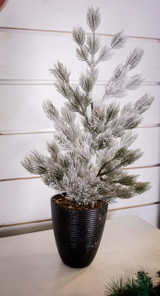 """24"""" Snow Tree in Black Container"""