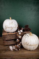 """""""Be Grateful"""" and """"Blessings"""" Resin White Pumpkins"""