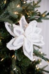 Sheer Petal and White Snow Edge Poinsettia Christmas Flower