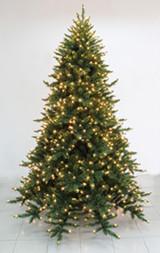 Telluride Spruce Christmas Tree