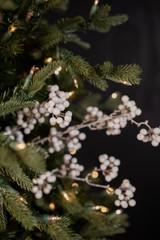 "24"" Elderberry Christmas Tree Sprays"