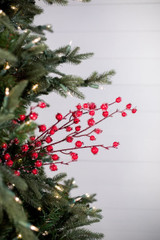"30"" Mini Pomegranate Iced Christmas Tree Sprays"