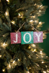 """3"""" x 8.25"""" Joy Ornament"""