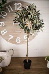 "36"" Olive Leaf Topiary"