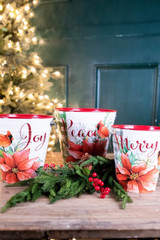 Metal Holiday Poinsettia & Cardinal Buckets - Set of 3