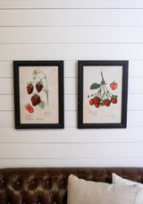 """13.5"""" x 19"""" Framed Strawberry Print With Glass"""