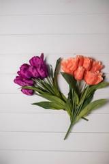 "20"" Tulip Bush"