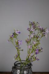 "29"" Seeded Phlox Spray Purple"
