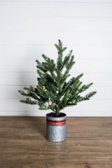 """24"""" Farmhouse Potted Snowy Pine Tree"""