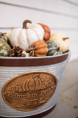 """10"""" Galvanized Metal """"Pumpkin Patch Farms"""" Buckets With Handles - Set of 3"""