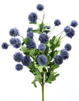 "20"" Echinops Bush Blue"
