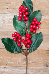 """33"""" Magnolia Leaves with Berries Christmas Spray - Red"""