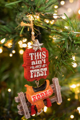 This Ain't My First Rodeo Ornament