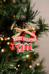 Merry Christmas Y'all Texas Ornament