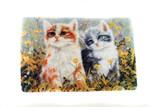 """Cat Doormat (27"""" wide x 17"""" high)"""