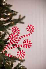 """30"""" Fabric Peppermint Spiral Curly Spray"""