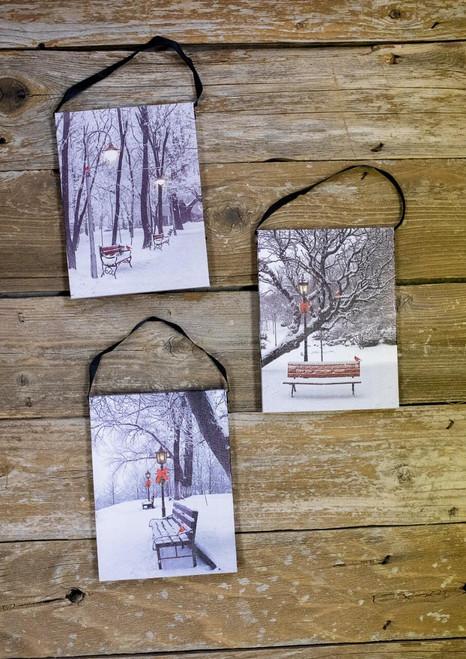 Canvas-Bench Assortment