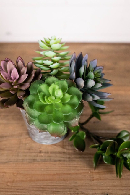 "7.5"" Artificial Succulent Pick"