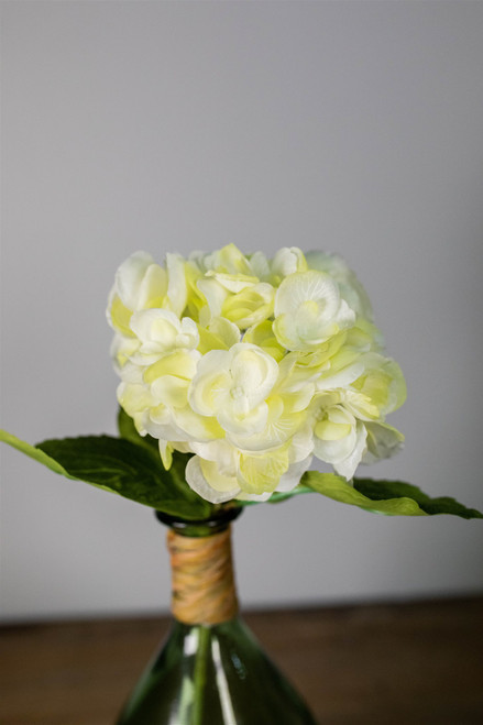 "19"" Hydrangea Stem Cream"