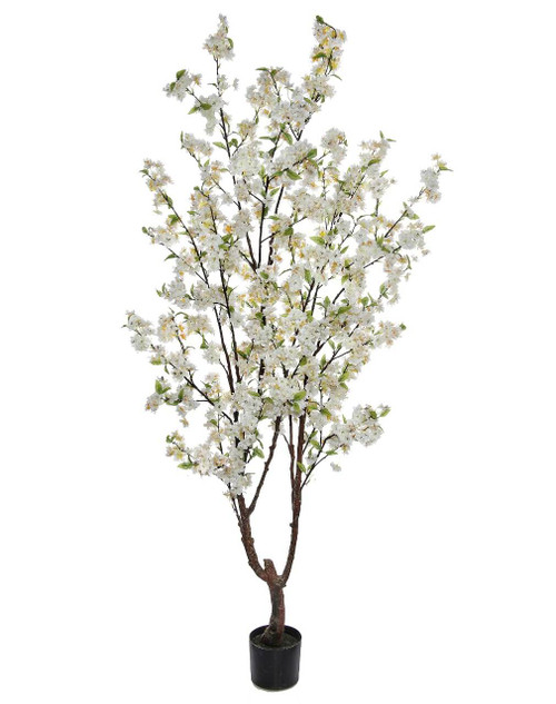 6.5' Cherry Blossom Tree White