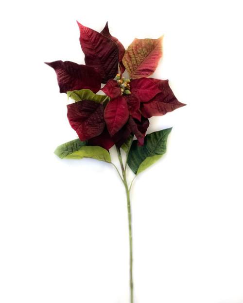 """34"""" Burnt Red Velvet Poinsettia"""