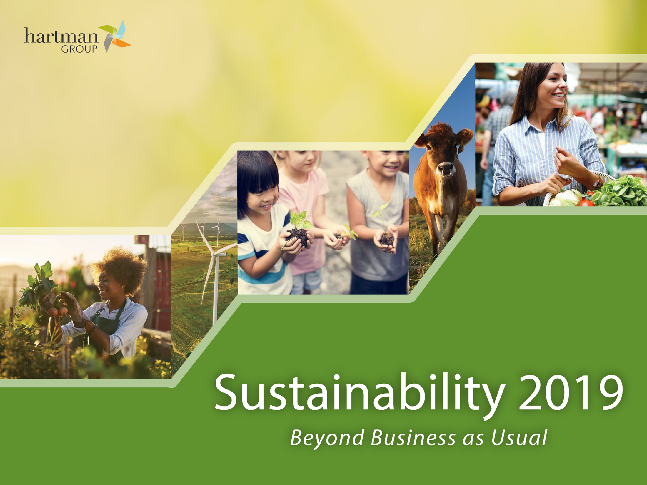 Sustainability 2019: Beyond Business as Usual