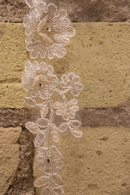 Gorgeous champagne edged veil. Compliments lace in champagne or ivory.