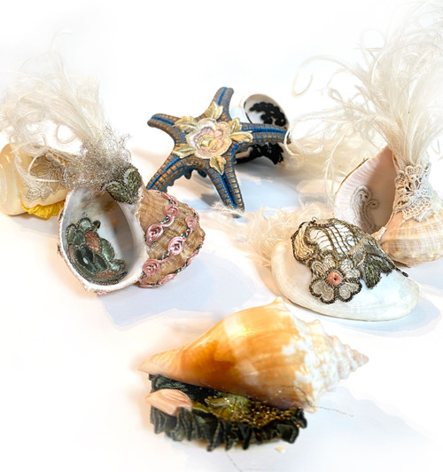 Mary Becker: Coming Up for Air: Seashells