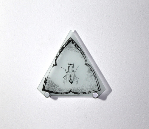 Keith Garubba:  Trefoil Fly