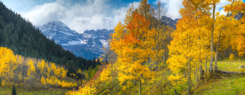 """'Aspen Glow"""" by Cavanah. This is a limited edition, signed and numbered giclŽe print.  A certificate of authenticity will be included with your purchase"""