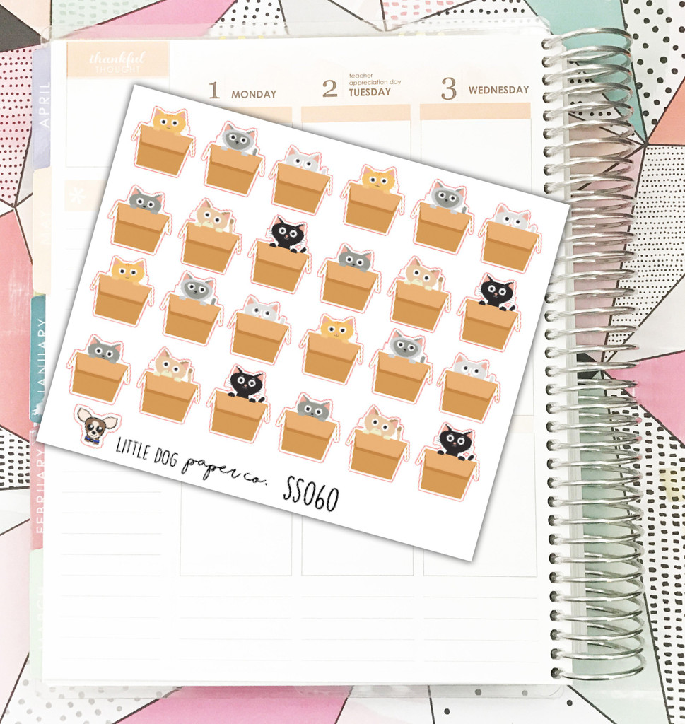 Cats in Boxes Stickers
