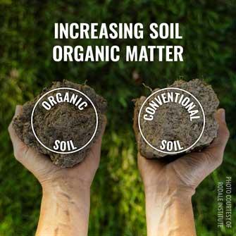 increasing organic matter