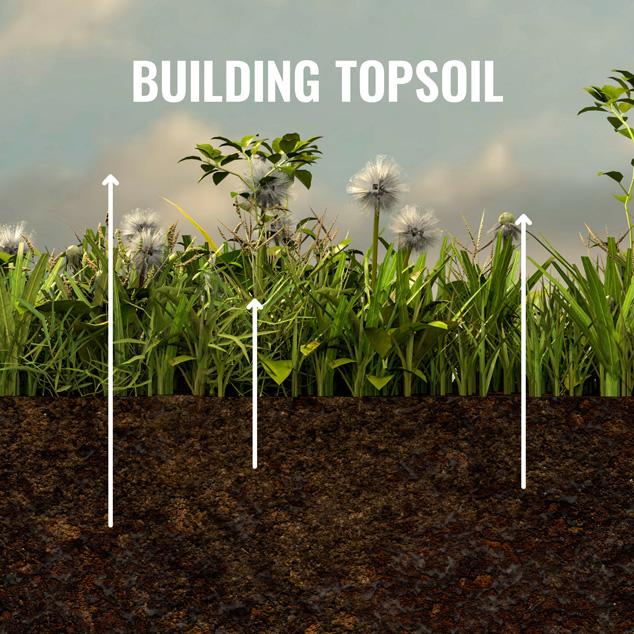 building topsoil