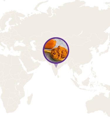 turmeric farmers map