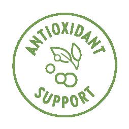 Antioxidant Action
