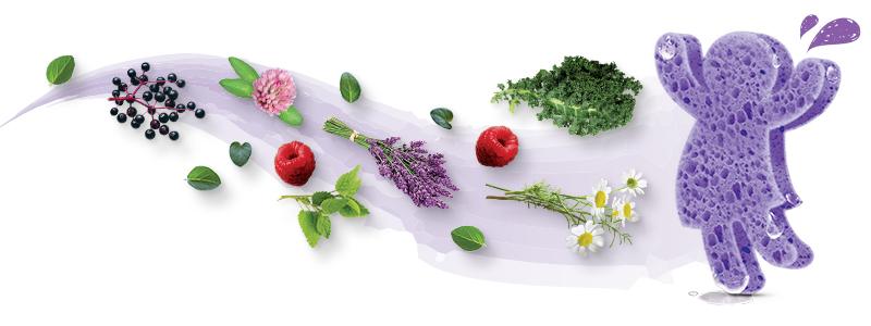 Absorvendo nutrientes