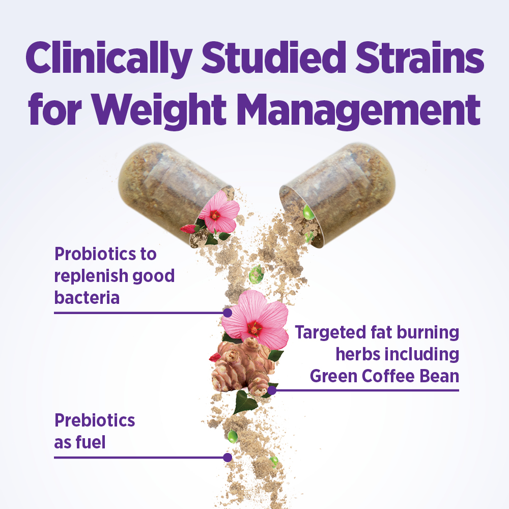 Clinically Studied Strains for Weight Management: Probiotics to replenish good bacteria, Prebiotics as fuel, Targeted fat burning herbs including Green Coffee Bean.