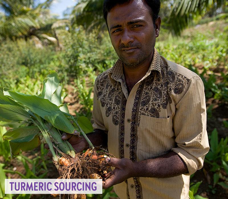 Turmeric Sourcing