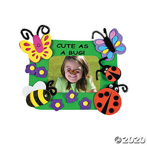 Cute As a Bug Picture Frame Magnet Craft Kit Set of 12