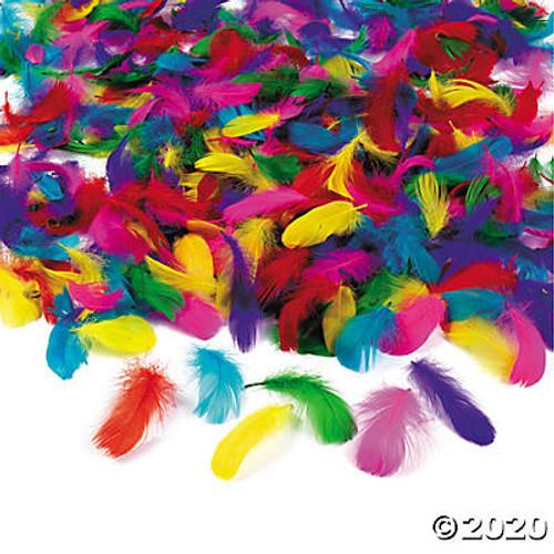 Bulk Feather Assortment